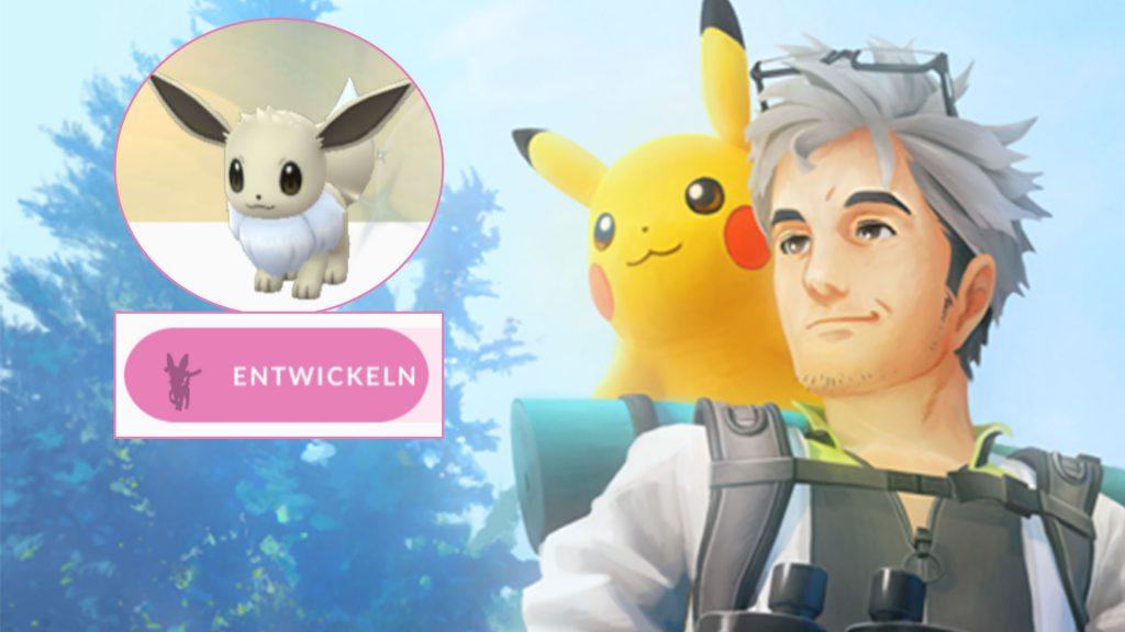 Pokémon GO Evoli Entwickeln Feelinara Titel Willow