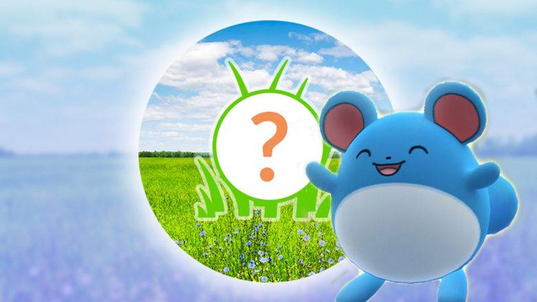 Pokémon GO: Rampenlichtstunde heute mit Marill und mehr Sternenstaub für euch