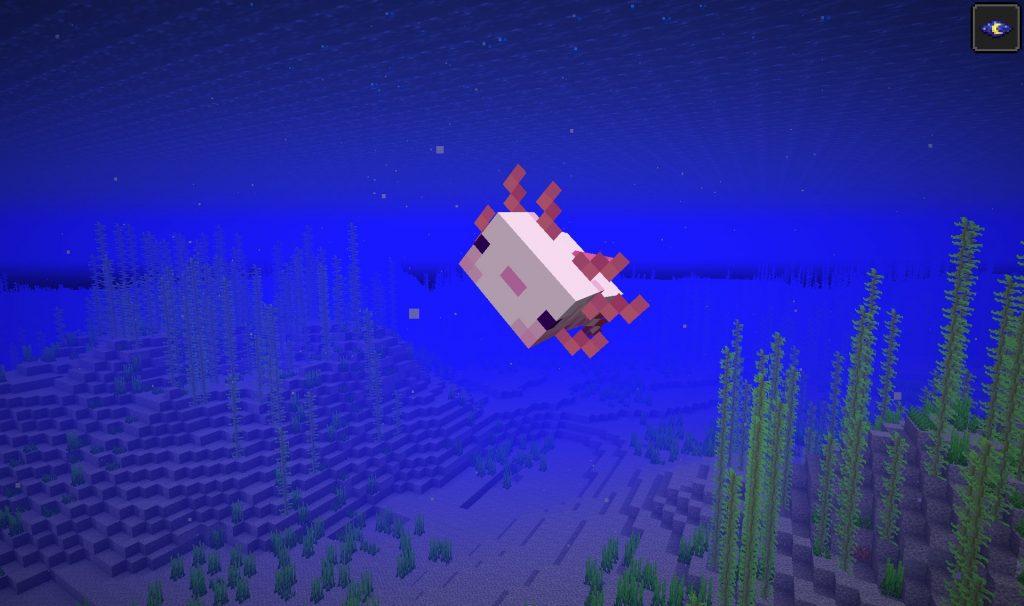 Minecraft Axolotl Playing Dead