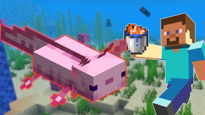 Minecraft Axolotl titel title 1280x720