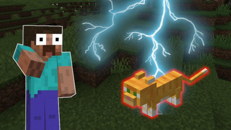 Minecraft: Wie viel Pech kann man haben? Blitzeinschlag röstet die Katze