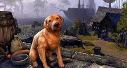 """ESO: Kurioser Bug macht Spieler plötzlich zum Hund und tausende feiern den """"Fehler"""""""