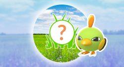 Pokémon GO: Rampenlichtstunde heute mit Natu und mehr EP für euch