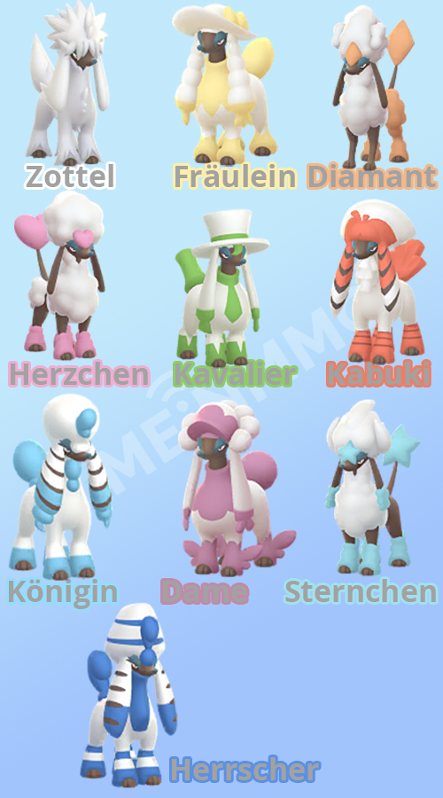Pokémon-GO-Coiffwaff-Schnitt-Formen2