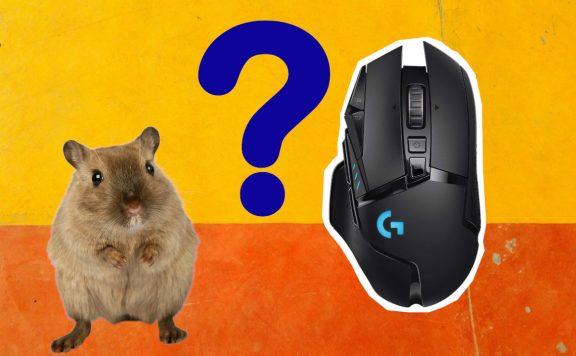 Titelbild Maus und Maus neu
