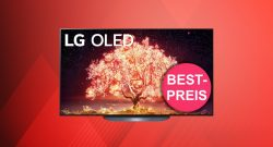 Großer LG OLED-TV mit 77 Zoll aktuell zum Tiefstpreis bei Amazon.de