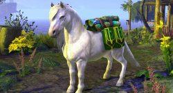 eso-stream-mit-pony-titel01