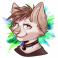 Profilbild von Kazuto Wildcat
