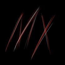 Mendalithfox13