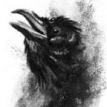 Nirraven