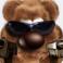 Profilbild von papabaer29